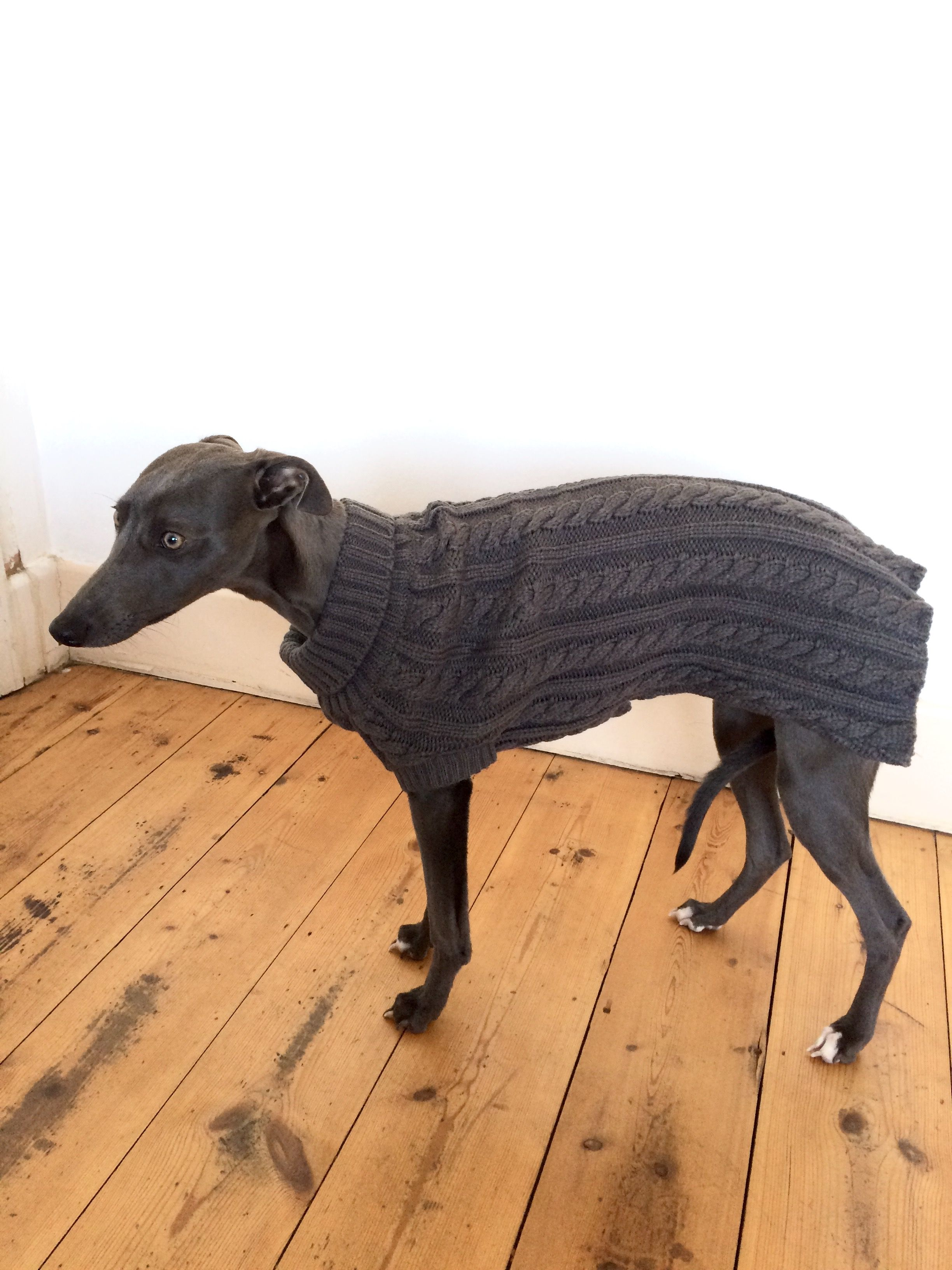 Grey cable knit whippet jumper sighthound lurcher greyhound the grey cable knit whippet jumper sighthound lurcher greyhound bankloansurffo Images