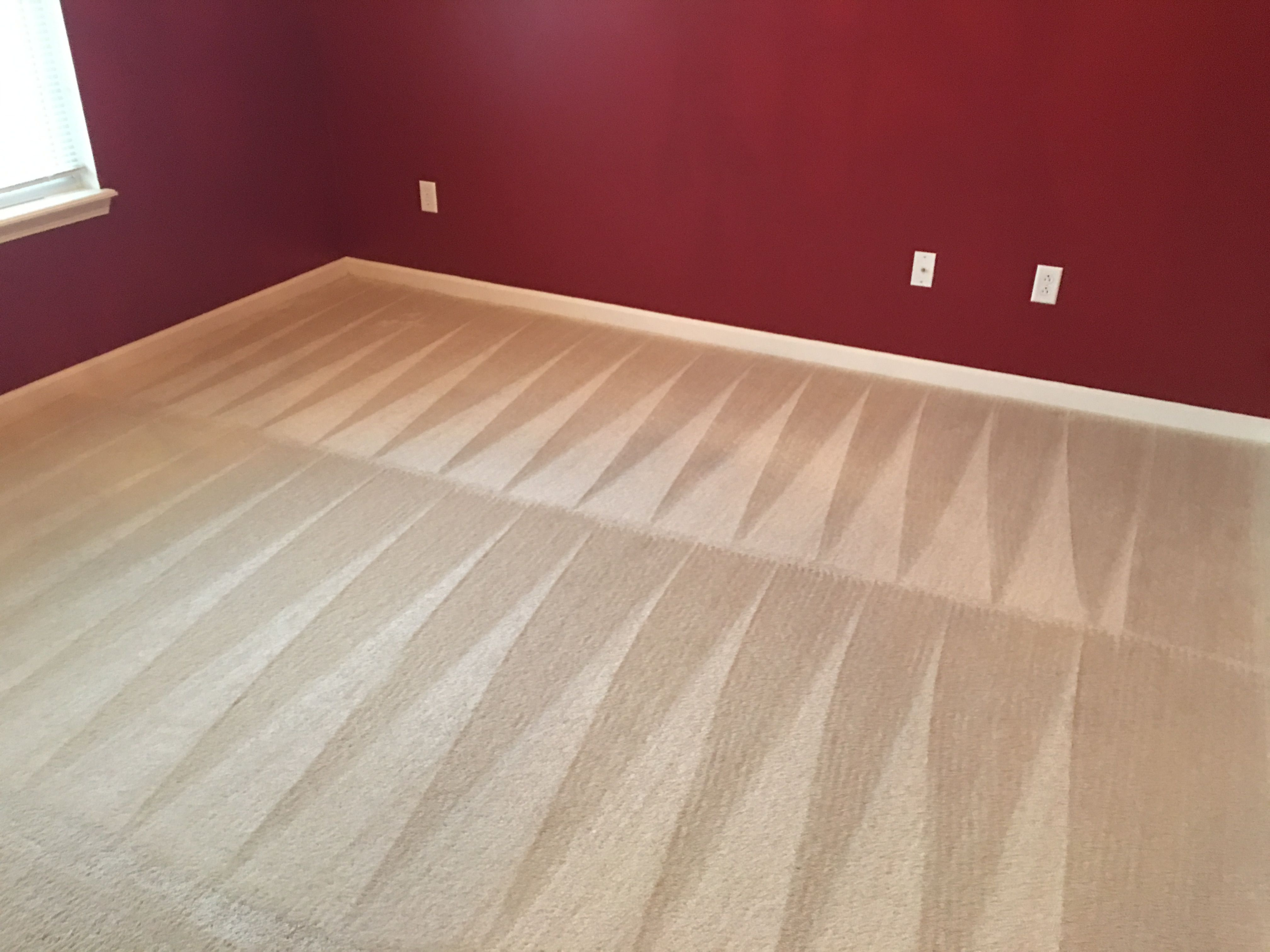 Pin By E Cleaning On Carpet Cleanign Tips How To Clean Carpet Carpet Cleaning Solution Carpet Odor Remover