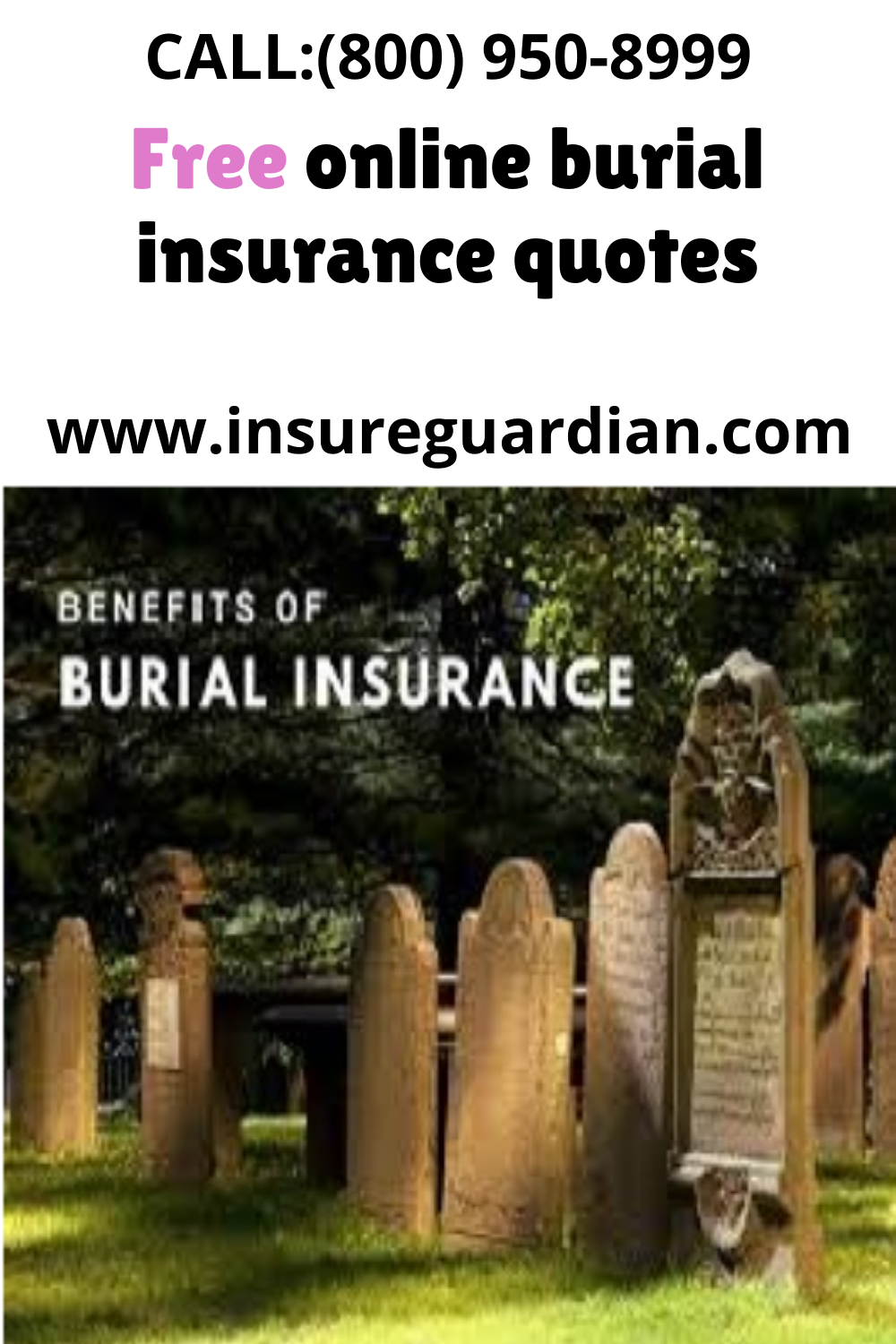 Best 2020 Burial Insurance Quotes in 2020   Best life ...