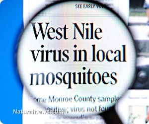 Avoid West Nile naturally with these tips and immune-boosting supplements