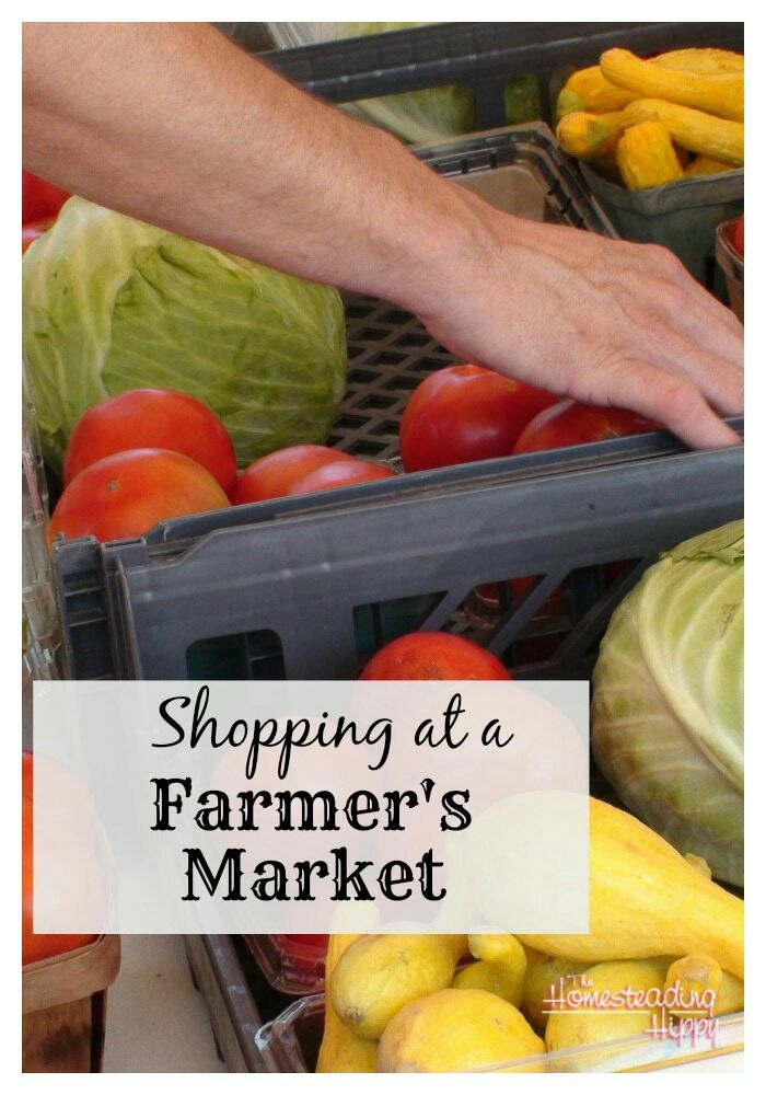 Farmers markets are in fill swing. Here's some toys for Shopping at a Farmer's Market