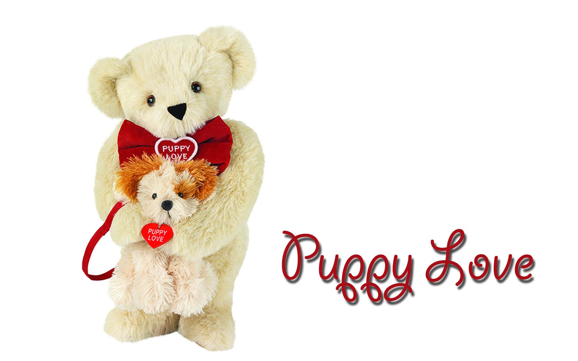 Cute Puppy Wishes Happy Teddy Bear Day Wallpapers Teddy Bear In