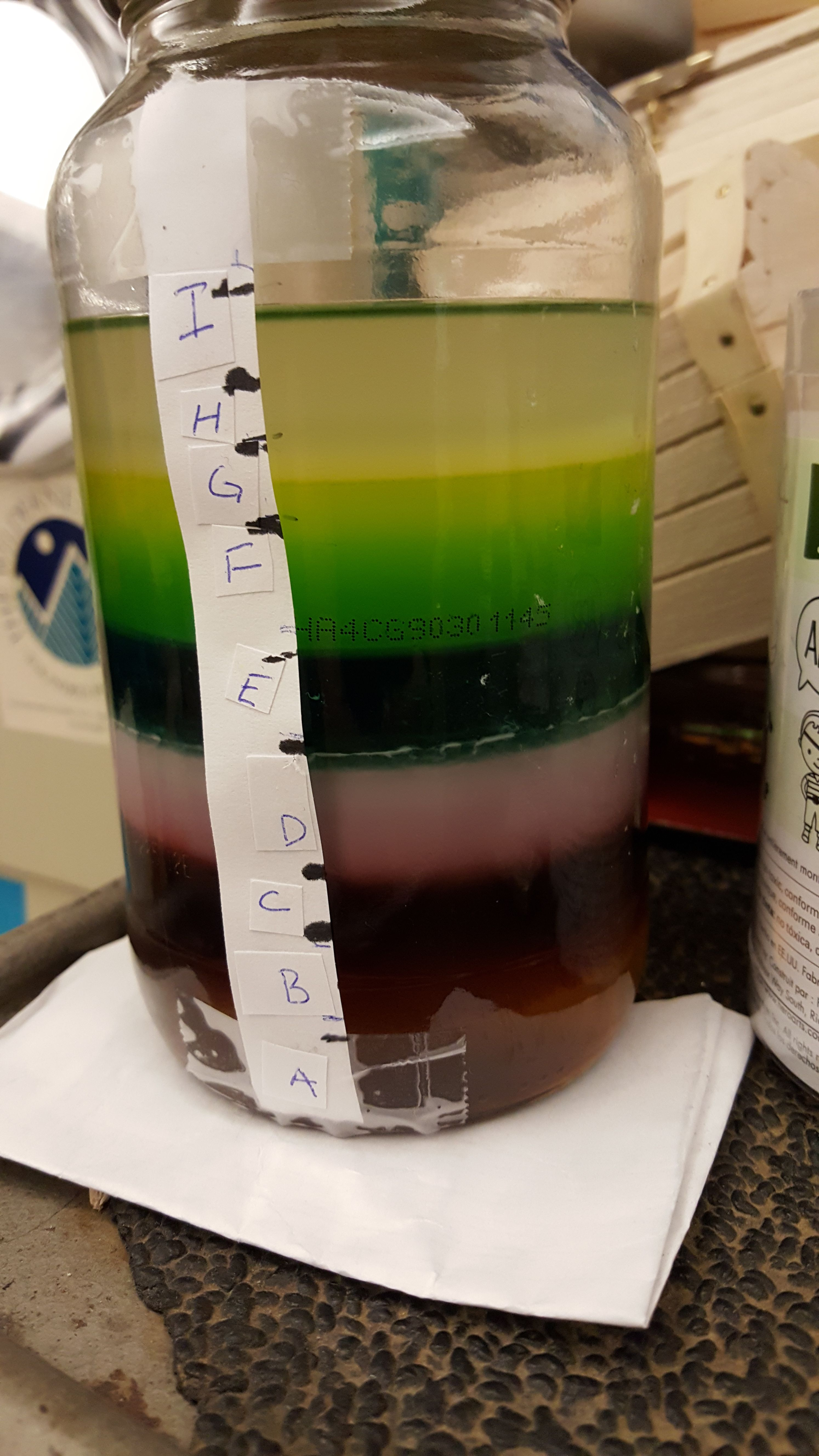 Students Completed This 9 Layer Density Column To Review