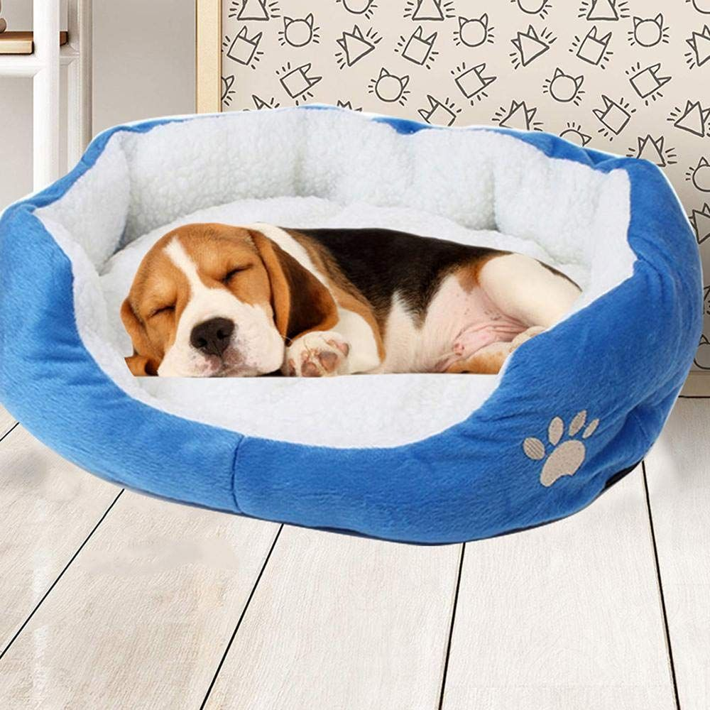 Dog Beds For Large Dogs Clearance Deluxe Pet Beds Super Plush Dog And Cat Beds Small And Large Check Out The Picture Web Link Eve Pet Beds Cat Bed Plush Dog
