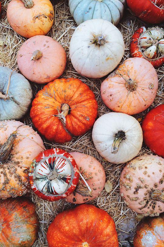 Halloweenmagick Fall Wallpaper Autumn Inspiration Autumn Aesthetic