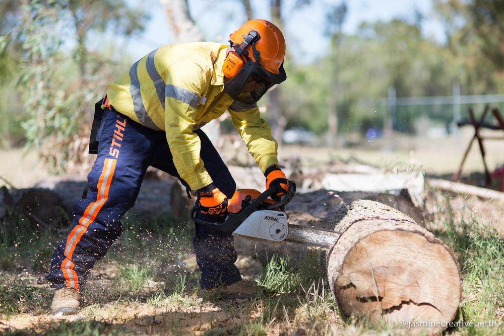 chainsaw training photography perth Western Australia