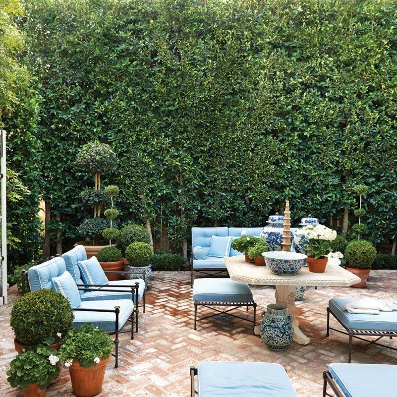 25 Designers Celebrate Blue And White Decor Flower Magazine Small Backyard Landscaping Winter Garden Outdoor Furniture Design