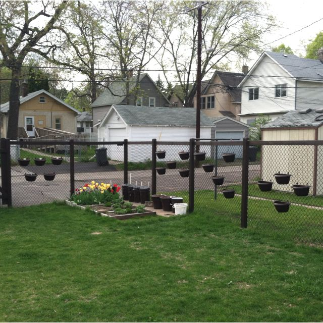 Container Gardening Vs. Chain Link Fence