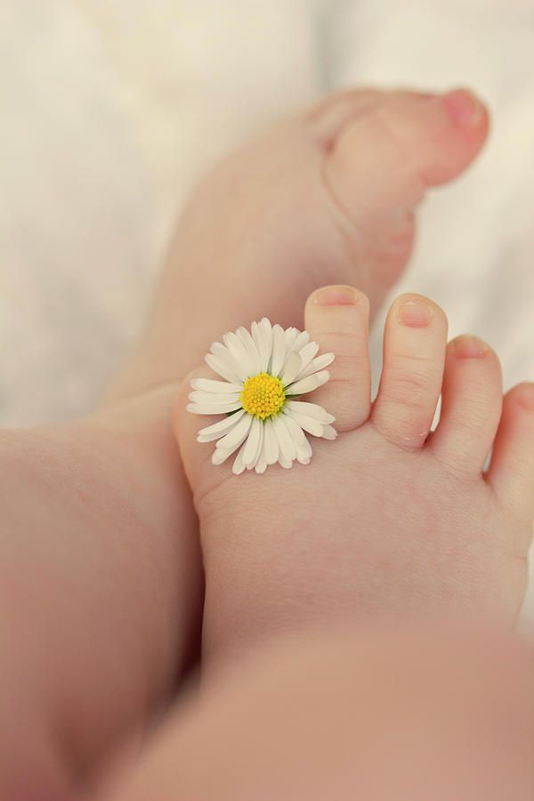 Baby Photograph - Flower In Baby Toes. by Augenwerke-Fotografie / Nadine Grimm