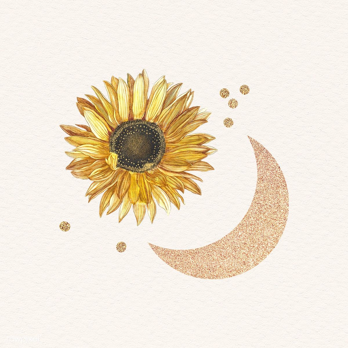 Download premium illustration of Blooming sunflower with a glittery