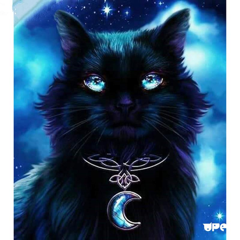 дорогой мистические картинки с кошками как при покупке