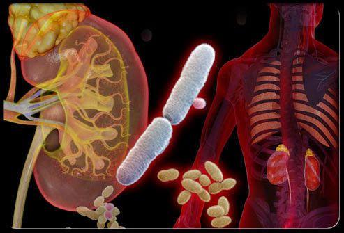 Medicamente naturiste pentru taierea poftei de mancare