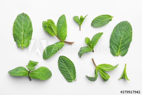Stock Image: Fresh green mint leaves on white background, top view