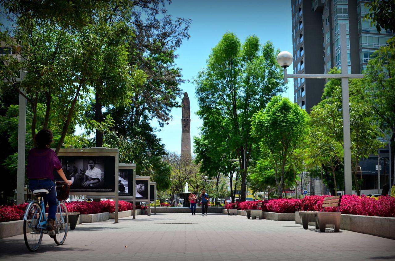 Avenida Chapultepec en Guadalajara.