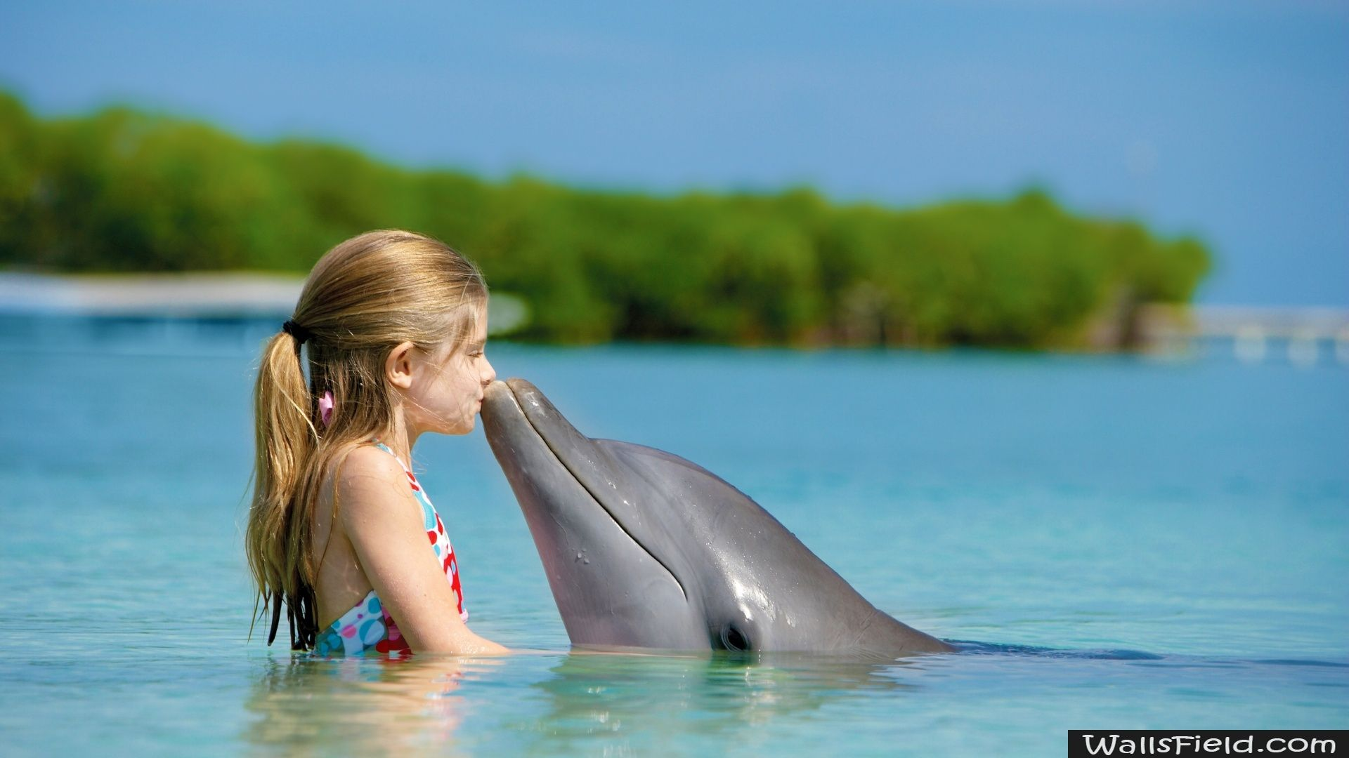 Friendship free hd wallpapers hd wallpaper and baby wallpaper cute girl with dolphins voltagebd Images