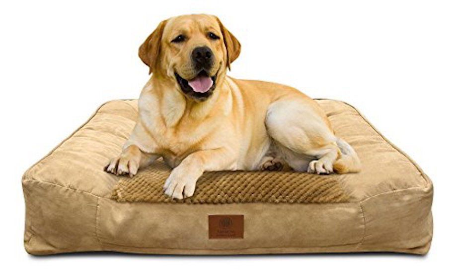 Big Dog Bed Extra Large Washable Best American Kennel Club Pet Memory Foam Comfy