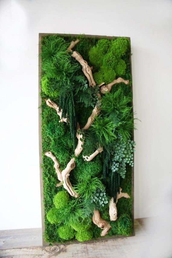 Photo of 40″ x 18″ Artisan Moss® Real Preserved Plants in Reclaimed Wood Frame Plant Painting®- No Care Green Moss Wall Art.