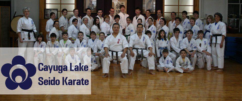 Cayuga Lake Seido Karate Training Mind Body And Spirit