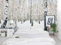 Magnificent Forest Wall Mural Removable - Repositionable Wall Murals