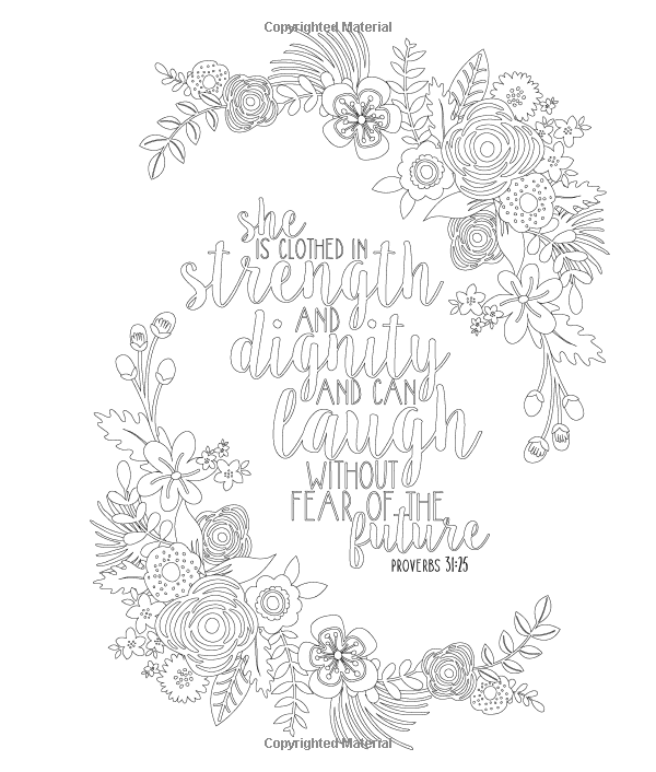 Amazon Beauty In The Bible An Adult Coloring Book Premium Edition