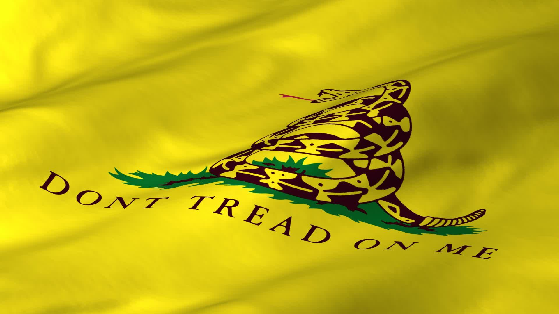 Gadsden Flag Wallpaper 1024x768 Dont Tread On Me Wallpapers 32