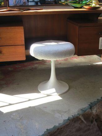white stool tulip - Google Search