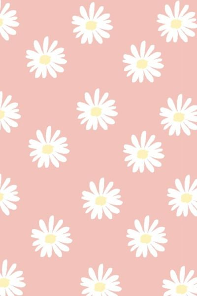 Daisy Flowers Iphone Wallpaper