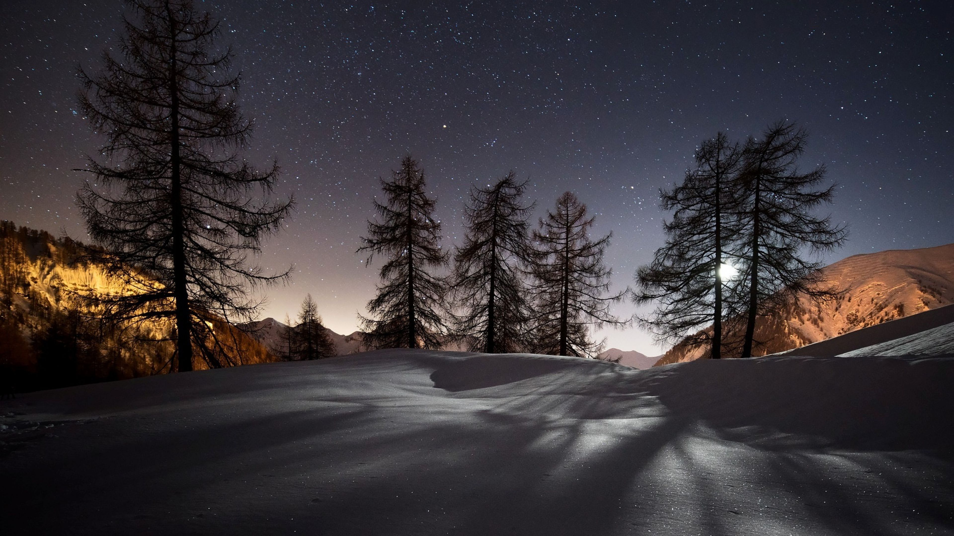 Winter Trees Snow 4k Wallpapers Night Landscape Landscape Wallpaper Winter Wallpaper
