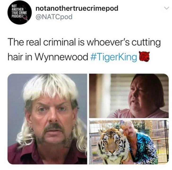 Tiger King Memes Google Search In 2020 Funny Tiger King Meme Best Memes