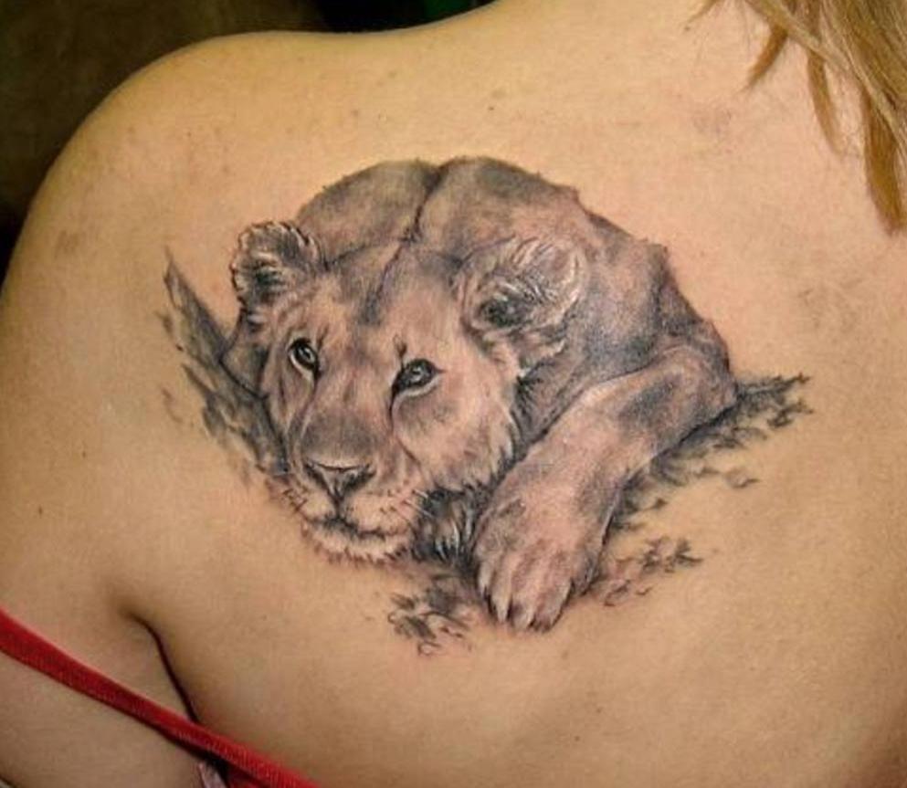Tatuaż Lwica Szukaj W Google Tatuaże Tatuaż Tatuaże I