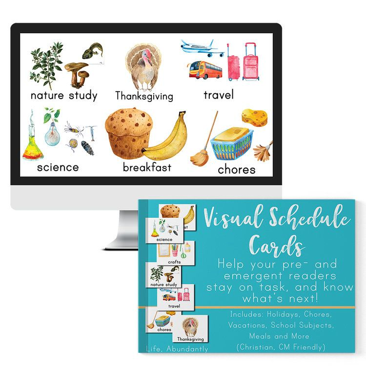 Visual Schedule Cards + MY DAY Planner (DIGITAL