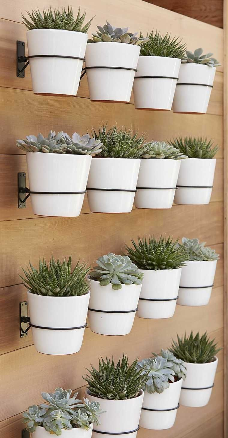 Multi-pot wood wall for succulents crate and barrel planter brackets