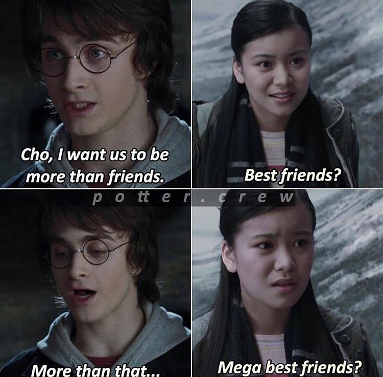 Pin By Shannon Lynton On Harry Potter Imagines Best Friends Edgy Memes Funny Memes