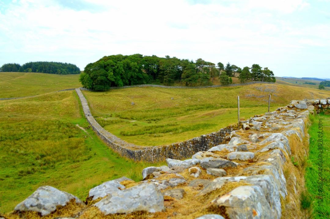 Housesteads Roman Fort And Hadrian S Wall Romans In Britain National Trust English Heritage Roman Britain Hadrians Wall Britain