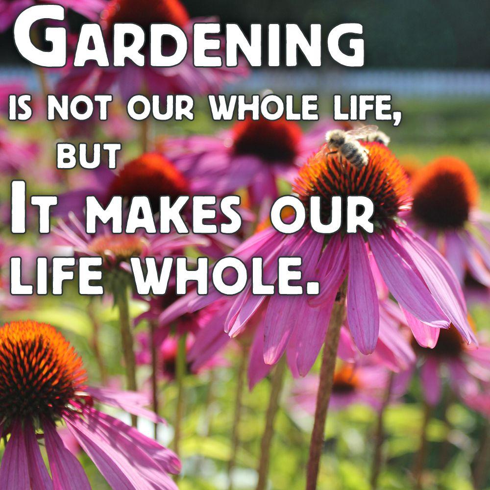 So True Garden Quotes Sensory Garden Garden