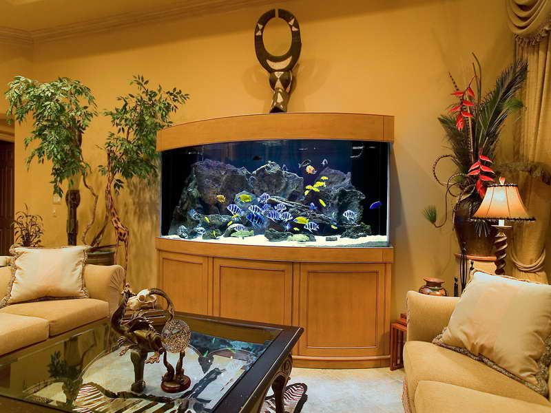 Indoor saltwater aquarium design ideas for living room picture saltwater aquarium fish for a - Decorative fish tanks for living rooms ...