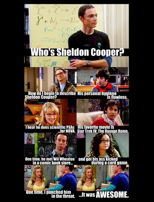 Who's Sheldon Cooper? - sheldon-cooper Photo