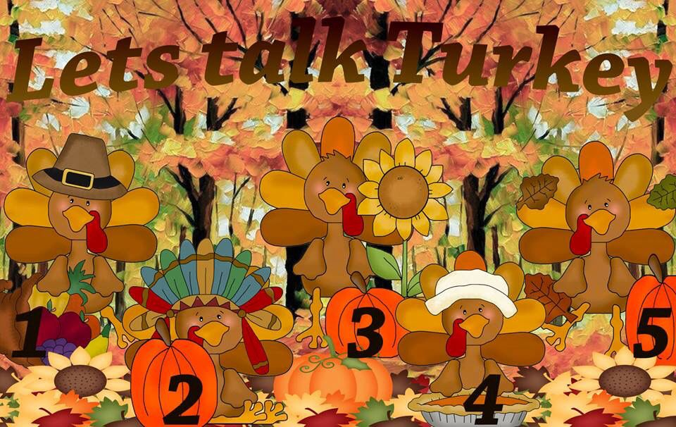 Who doesn't like games? TOO FUN! Pick a TURKEY; each one