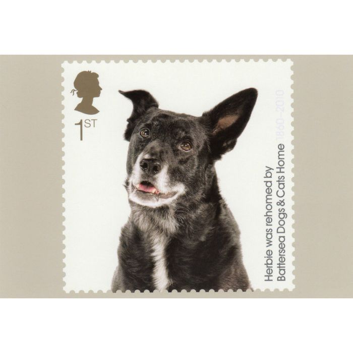 Image Result For Royal Mail Postage Stamps The Battersea Dog And Cats Home Battersea Dogs Royal Mail Postage Dogs
