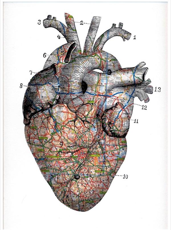 Colagem de Tyrone Dalby en 2018 | Medical | Pinterest | Medicina ...
