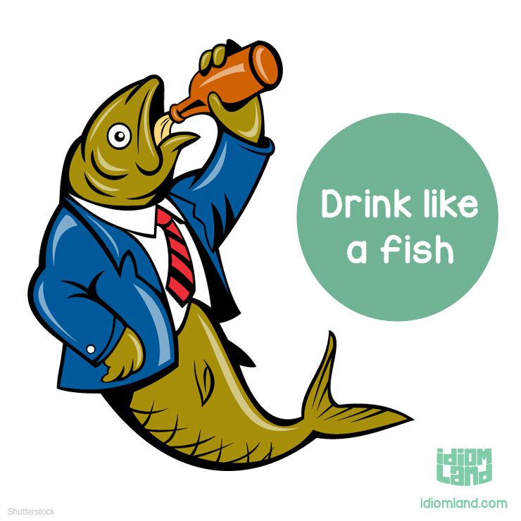 idiom of the day drink like a fish meaning to drink too