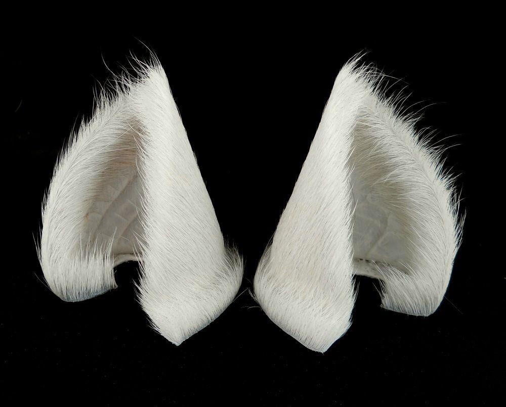 Sleek White Cat Ears Nekomimi Anime Cat Ears Fantasy Fashion Cat Ears