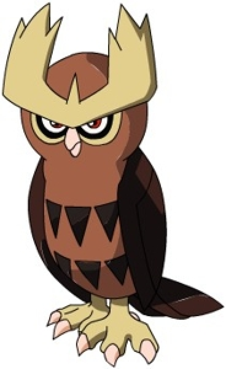 Noctowl pokemon coloring pages - 17 Best Images About Noctowl On Pinterest Confusion Ash And My Pokemon 17 Best Images About Noctowl On Pinterest Confusion Ash And My
