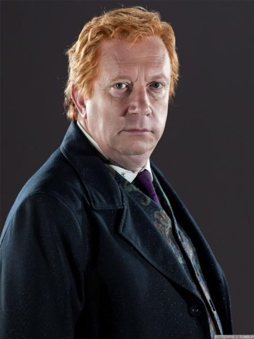 Arthur Weasley Weasley Harry Potter Harry Potter Facts Young Harry Potter