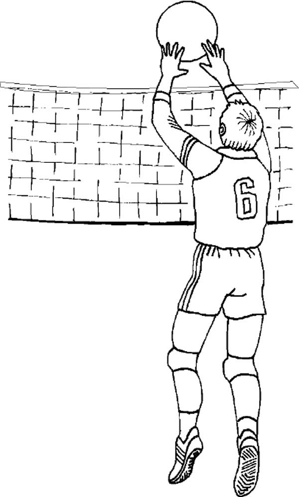 Volleyball Set Coloring Page - Download & Print Online ...