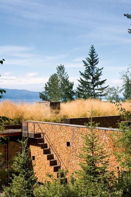 Long-stem native grasses on the roof add insulation but also make the house look as if it were just part of the landscape