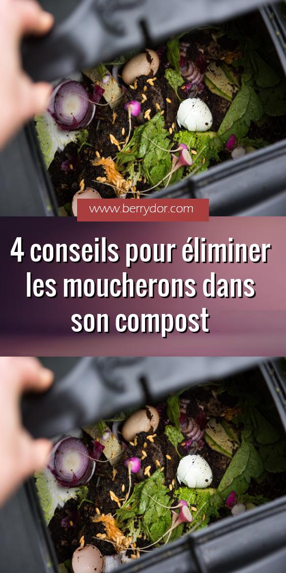 4 conseils pour éliminer les moucherons dans son compost ...