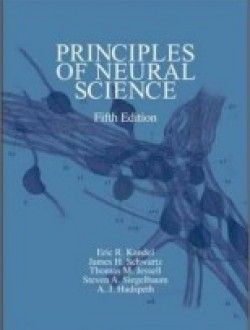 Principles Of Neural Science Fifth Edition Pdf Download Here