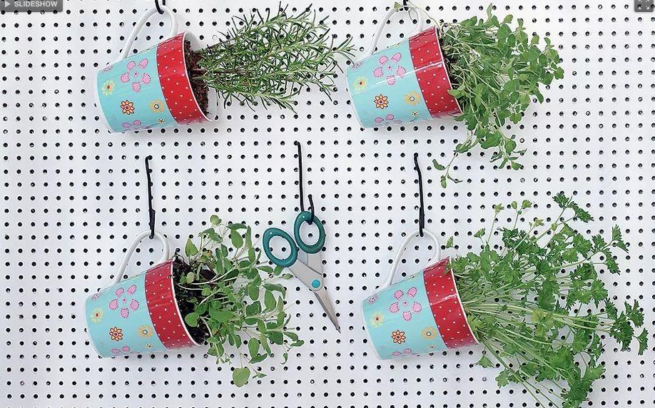 Olha que ideia criativa para  se ter plantas em casa. Que tal inovar e fazer de vasos em canecas suspensas?
