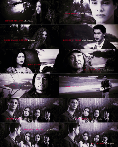 'The Twilight Saga'..Loved these movies.Please check out out my website thanks. www.photopix.co.nz